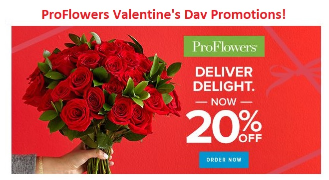 Proflowers Valentines Day Promotions Domestic Divas Coupons